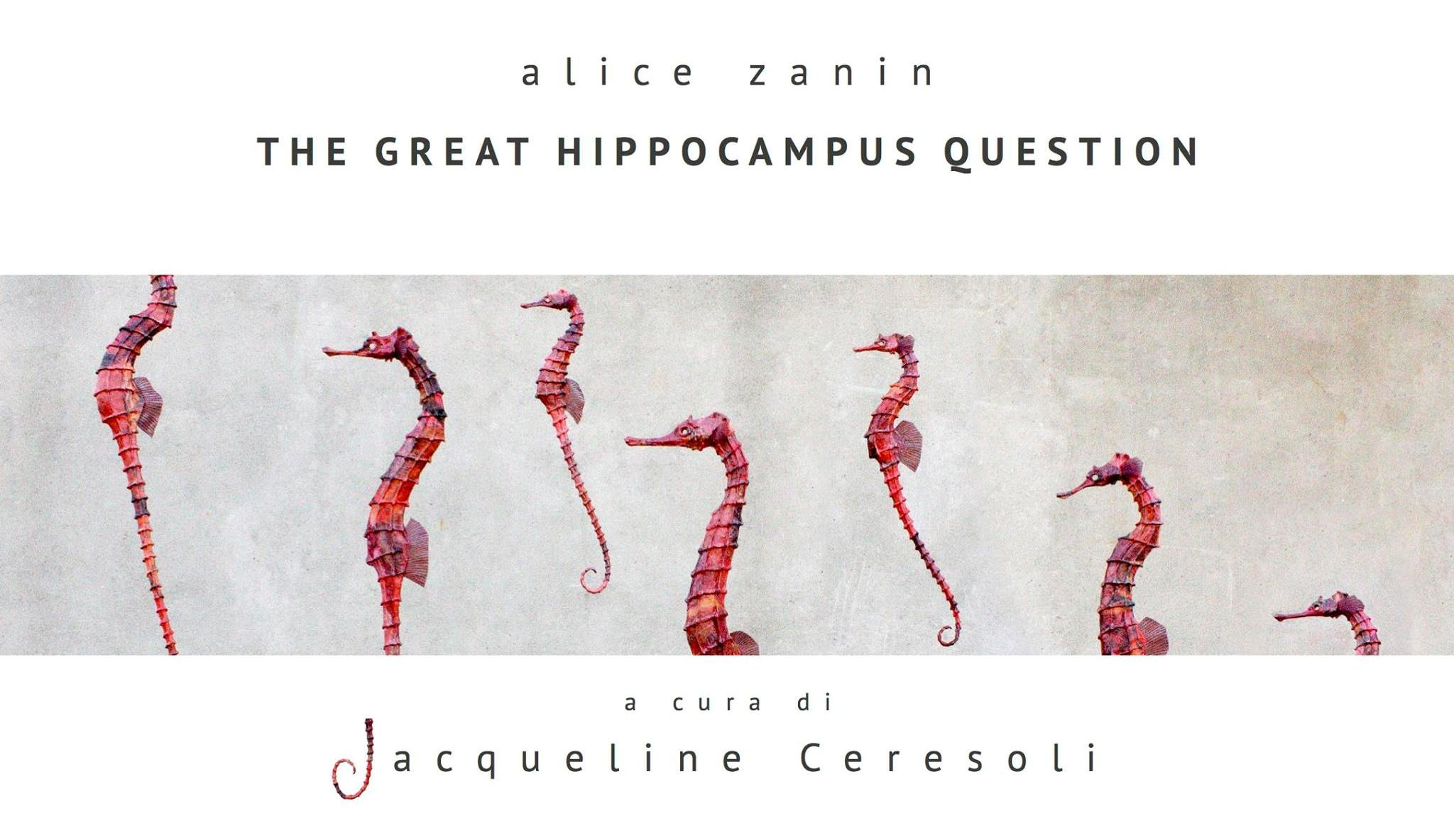 Alice Zanin